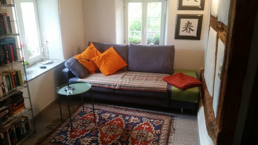 Dieses Sofa kann als Einzelbett genutzt, oder als Doppelbett (1,60 x 2,00 m) umgebaut werden