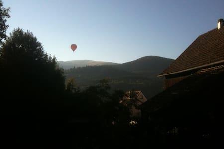 Un chalet entre vignobles et forêts - Muhlbach-sur-Munster
