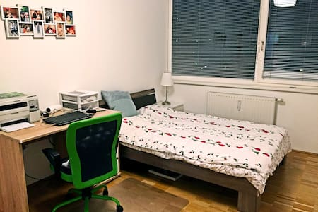 comfortable, bigsize room in free parking district - Vienna