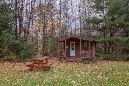 Log Cabin 2 w/access to 20 miles hiking trails - Freeville - Cabaña