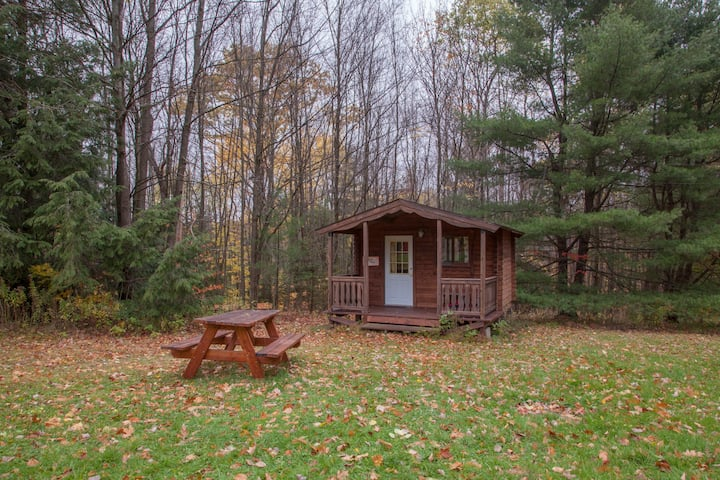 Camping Cabin in Beautiful Forest Setting