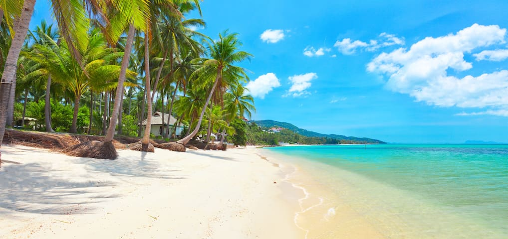 BEACH VILLA /KOH SAMUI  - MAE NAM thailand  2/3 P