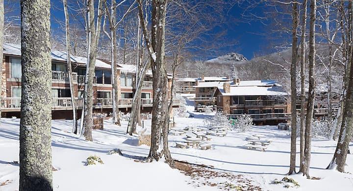 Resort Loft Villa 1 mile to Sugar Mountain Skiing!