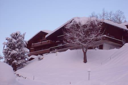Schöne Wohnung inmitten der fantastischen Bergwelt - Grindelwald - Lakás
