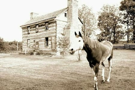 Twins or king in historic KY cabin - Harrodsburg