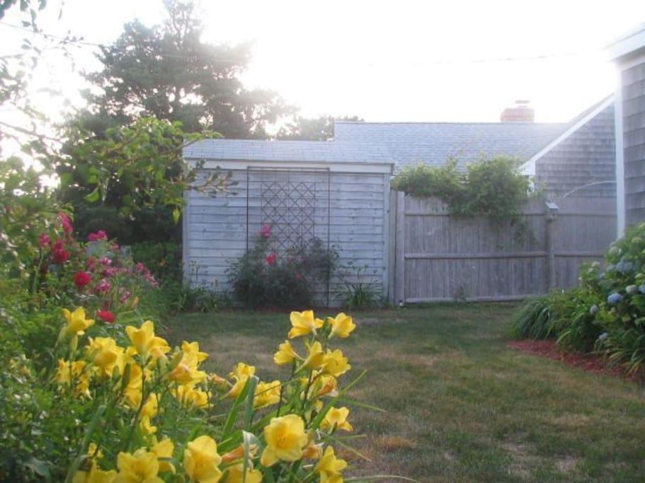 Blooming Garden Beds