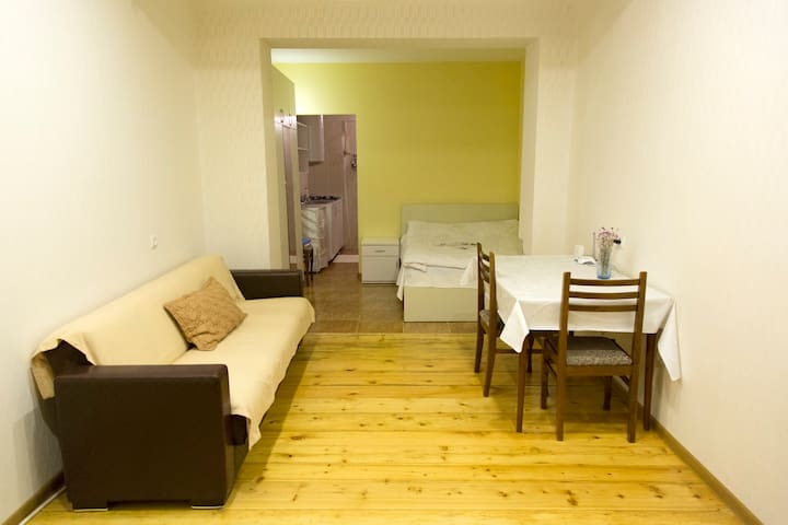 One room apartment in Tbilisi - Tiflis