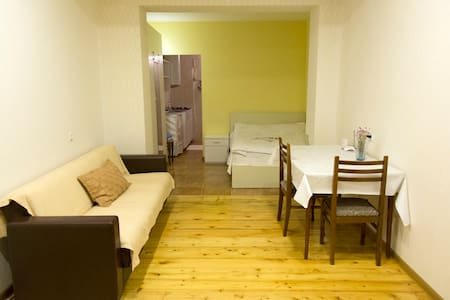 One room apartment in Tbilisi - Tbilisi - Leilighet