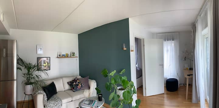 Fully equipped central fresh apartment  1,5 rooms