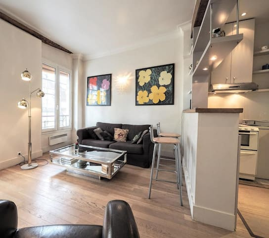 Charming 2 room flat in the heart of Le Marais,
