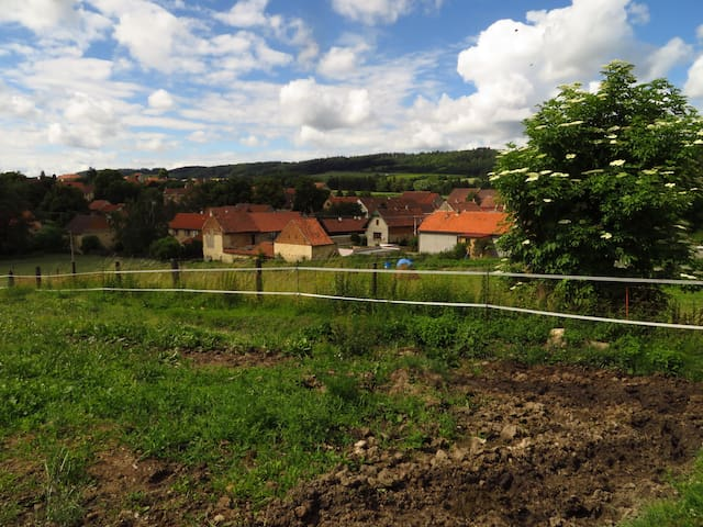 Organic Farm near Prague, Apt. No 4 - Hředle - Bed & Breakfast