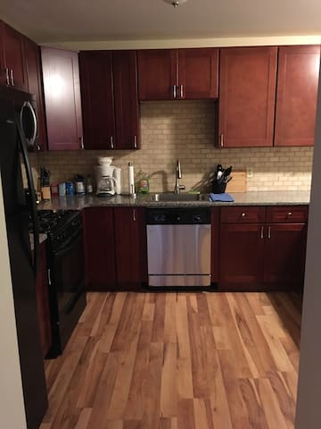 Beautiful Downtown condo/ Air/WIFI/close to Falls - Buffalo - Casa