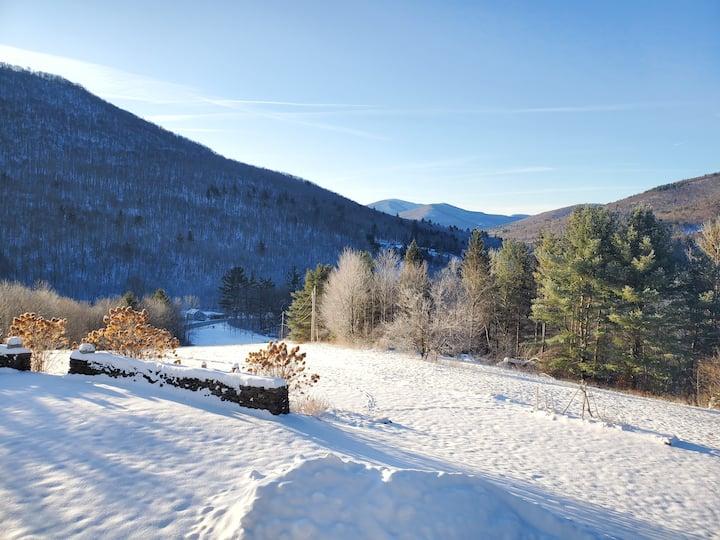 Wonderful Winter Wonderland w/ snowshoes