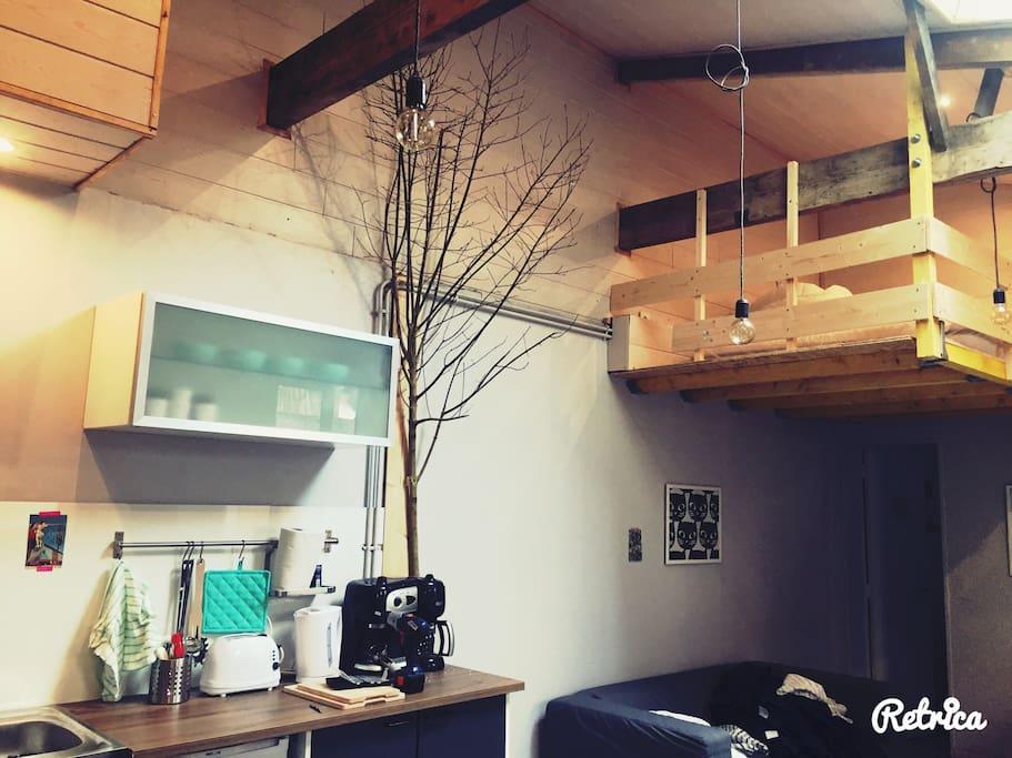 Le coin cuisine et l'arbre de l'espérance