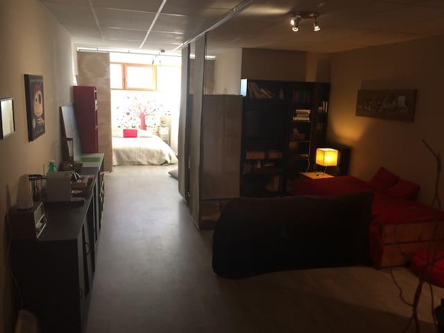 Suite 65 m2, salle de bain avec sauna, wc privés