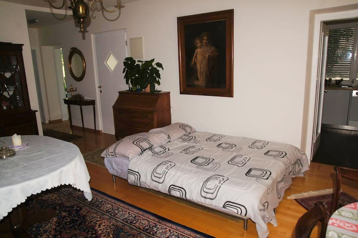 In a villa, comfortable sofa bed - Gargazzone - Lägenhet
