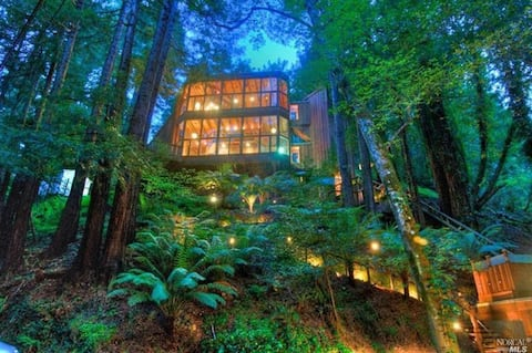 Stunning Chalet in Mill Valley Redwood Forest