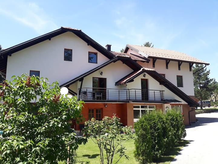 Apartment Tofilovic 1