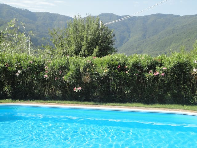 Beautifully renovated village stone house w pool - Prota - Casa