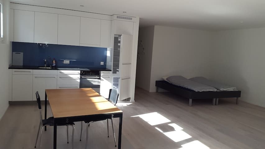 ruhige Einzimmerwohnung in guter Lage - Münchenstein - Leilighet