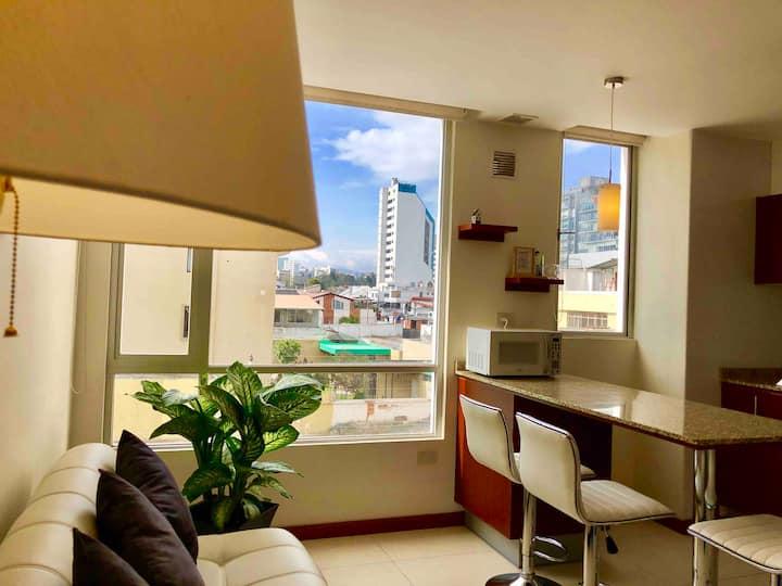 Suite downtown LaCarolina MallJardín Free Netflix
