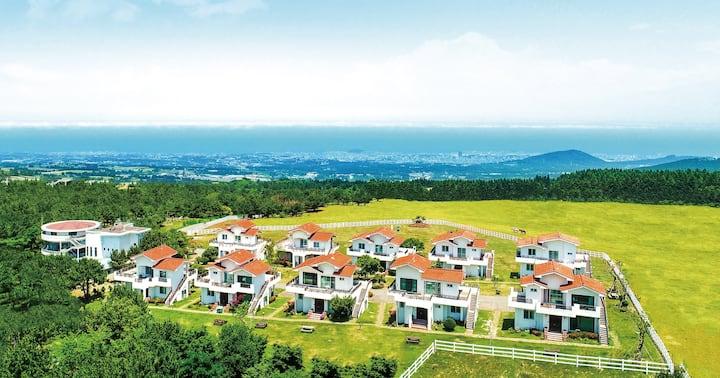 Amber Resort on Halla Mount (1bedroom+1livingroom)