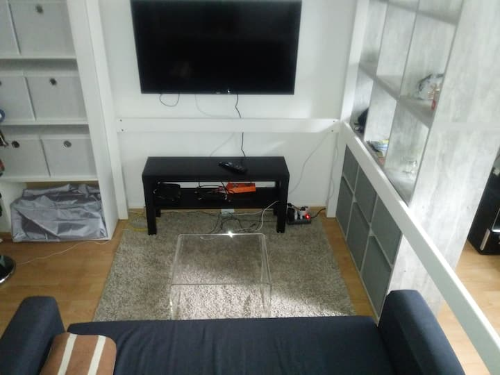 Apartment Bonn-Bad Godesberg  DHL-UN-Telekom-WCC