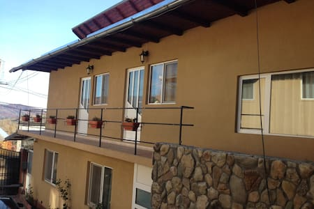 Friendly house in a charming mountain village - Brebu