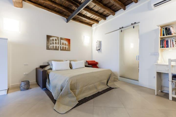 Maison Romana big loft, Rome Centre