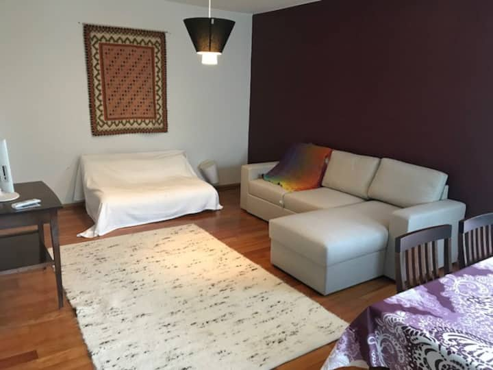 A cozy and spacious apartment in Pispala