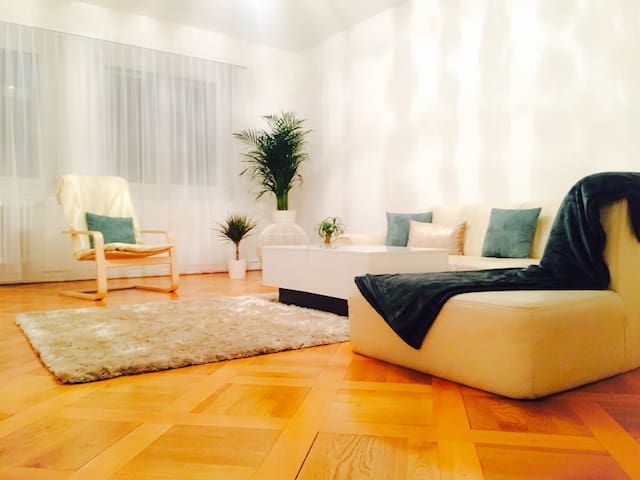 Charming flat in center of Geneva - Genève - Apartment