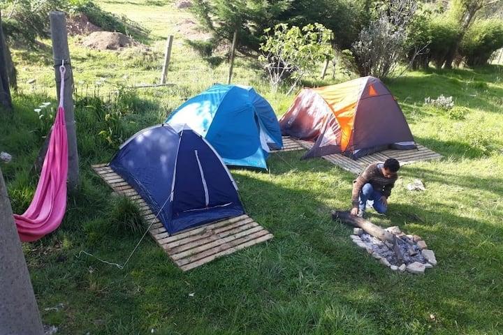 ZONA DE CAMPING NOBSA -BOSQUE NATIVO