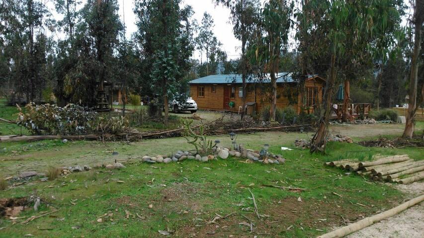 parcela en foresta de zapallar, comuna de zapallar - Zapallar - Maison