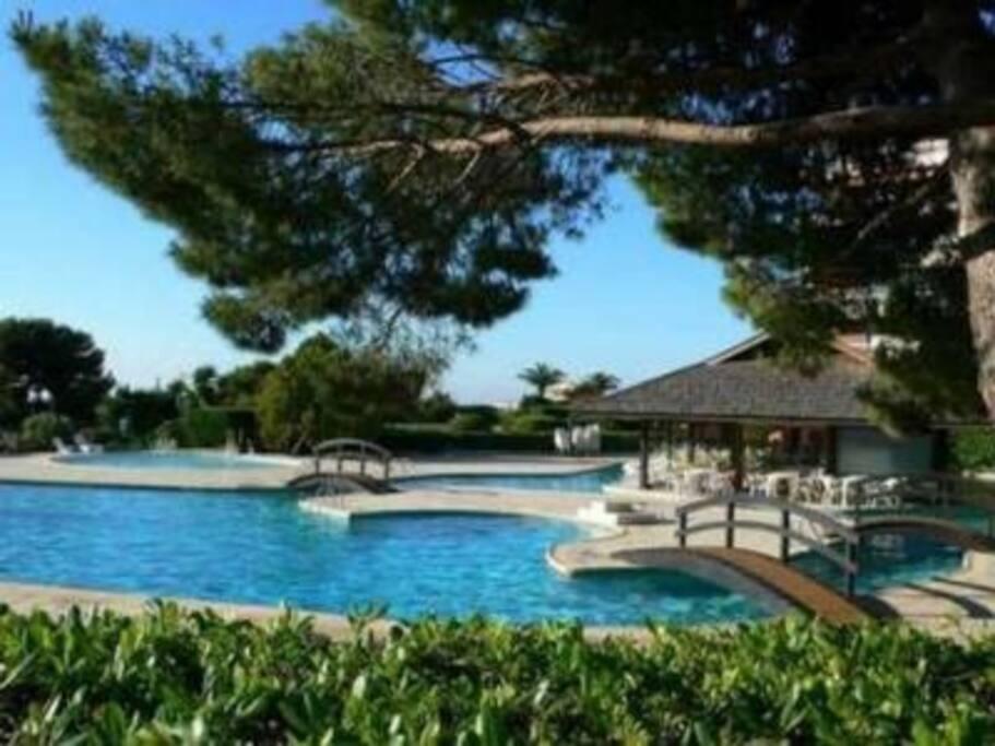Club restaurant avec piscine tennis etc appartements for Club azur magog piscine
