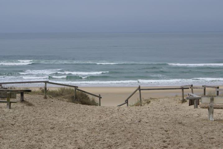 Contis-plage, 3*** océan Atlantique