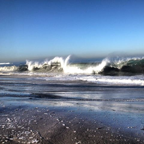 Ocean Front Living La Jolla - La Jolla - Lägenhet