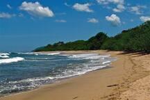 Langosta shores