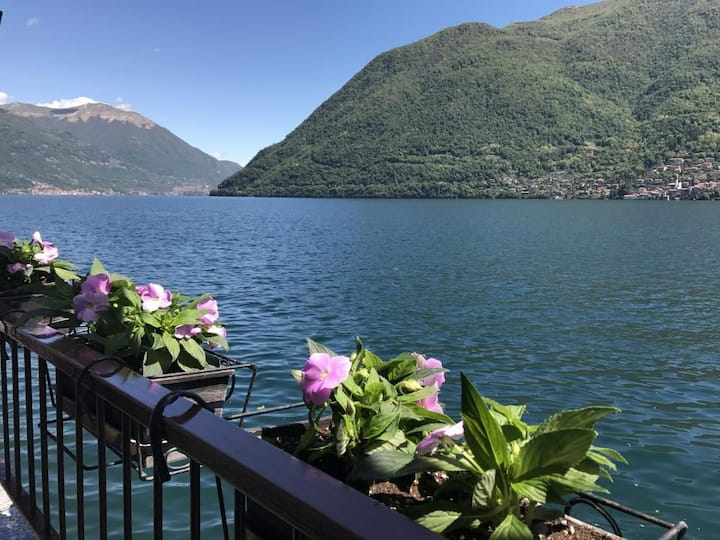Apartment La Torre, directly on the Lake