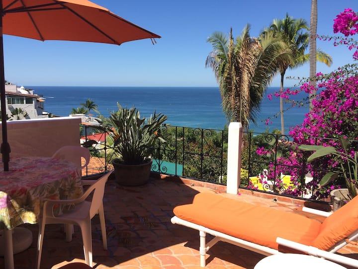 Casa Owaissa in Puerto Vallarta With Amazing View