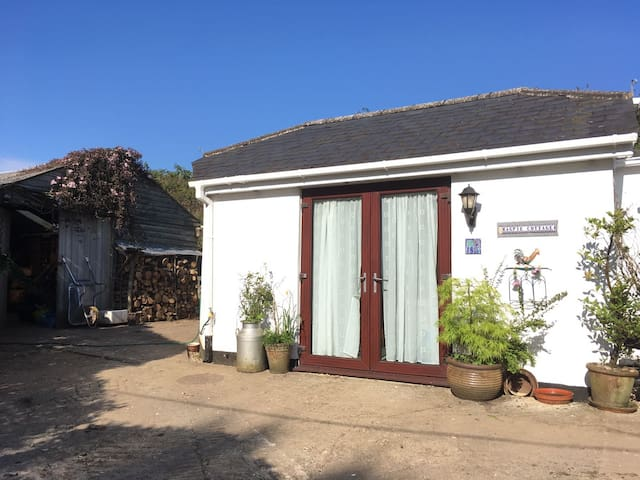 Light double room with ensuite and own entrance - Aveton Gifford - House