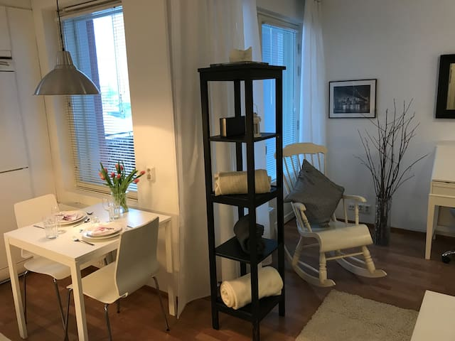 Lovely and cozy apartment near airport