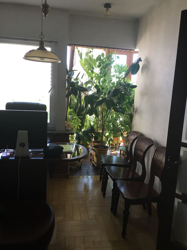 Сдаю светлую уютную комнату  на период  проведения чемпионата мира по футболу, недалёко от аэропорта Шереметьево и  стадиона  Спартак.
