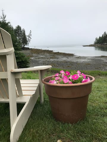 Best spot for morning coffee in our shared Adirondack chairs out front of our Cove...
