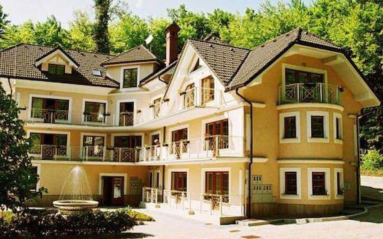 Charming Villa Toplice - Šmarješke Toplice - Apartment