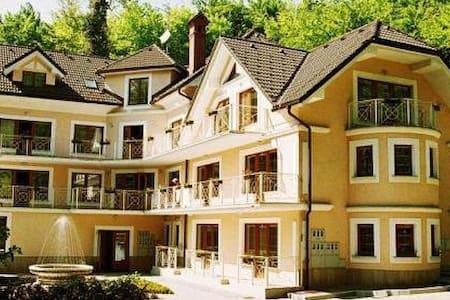 Charming Villa Toplice - Šmarješke Toplice - Huoneisto