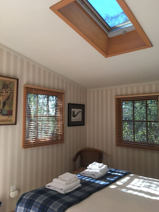 Different angle bedroom # 1, also shows skylight