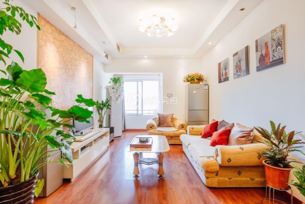 客厅空间大,采光好,家具家电齐全,绿植满屋。