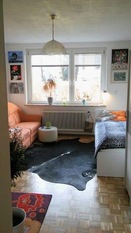 Salzburg zentral:  Einzelzimmer - Salzburg - Apartament