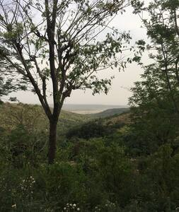 Organic Farm-stay on 10 acres in Lower Himalyas