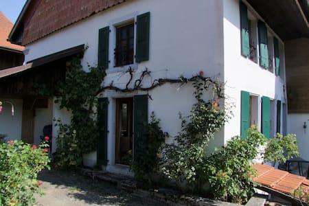 Les Arpents-Verts - Sarzens - 公寓